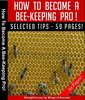 Thumbnail How To Become A Bee Keeping Pro