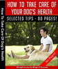 Thumbnail How To Take Care Of Your Dogs Health