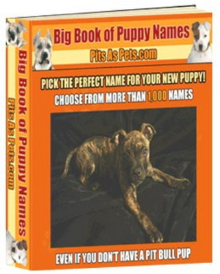Product picture Big Book of Puppy Names